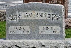 Frank Hamernik