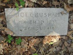 Joseph Cephas Bushart