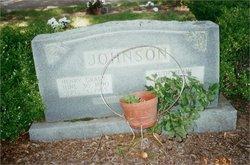 Henry Grady Johnson