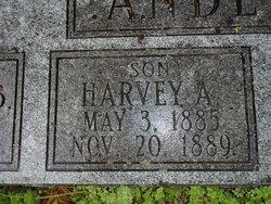 Harvey A Anderson