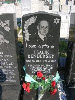 Tsalik Bendersky