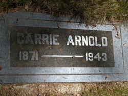 Carrie <i>Tanner</i> Arnold