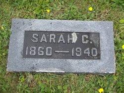 Sarah C Gibson