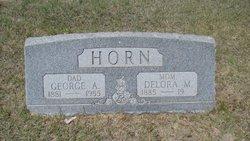 George Albert Horn