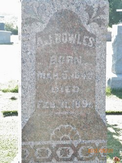 Andrew J Bowles