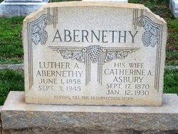 Catherine Alydia <i>Asbury</i> Abernethy