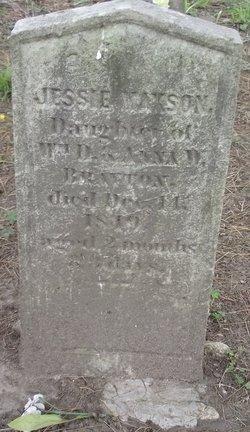 Jesse Maxson Brayton