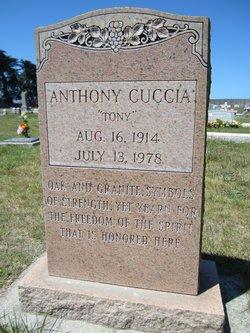 Anthony Felix Tony Cuccia