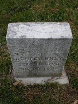 Agnes L. Brey