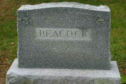 Jesse Waldo Peacock