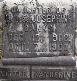 Frances Katherine Banks