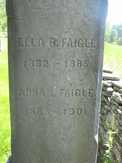 Anna L Faigle