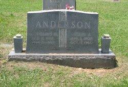 Rev William M. Anderson