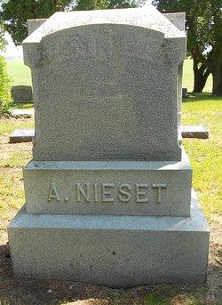 Andrew Nieset