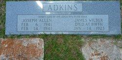 James Wilbur Adkins