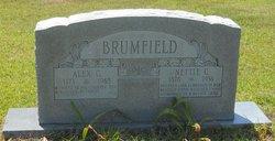 Alexander Griffin Brumfield