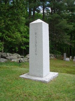 Cadwallader Lincoln The Silent Artist Washburn