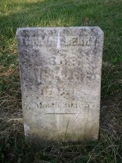 Thomas Berry
