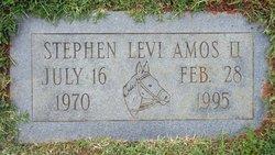 Stephen Levi Steve Amos, II
