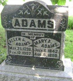 Allen Ansel Adams