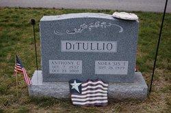 Anthony C DiTullio