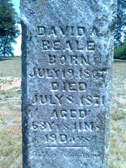 David A Beale