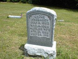 Elizabeth Alice <i>Gray</i> Amsbaugh
