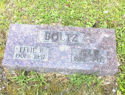 Effie Rachel <i>Brassfield</i> Boltz