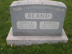 David J. Bland