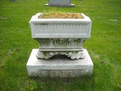Walter William Wallis