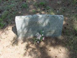 Edwin Edson Bradley