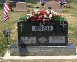 William Donald Bill Dluzak