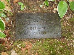 Clarence Budington Bud Kelland
