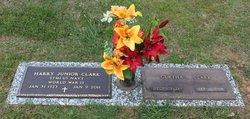 Harry Junior Clark