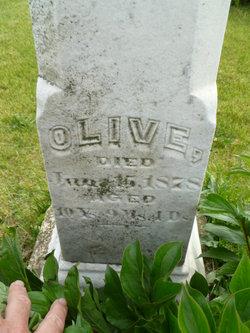Olive Brown