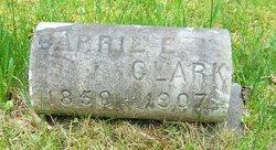 Carrie E Clark