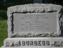 Anne Swift <i>Nye</i> Burgess