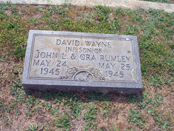 David Wayne Rumley