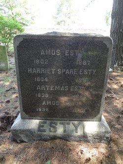 Amos Esty