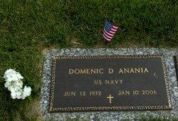 Domenic D Anania