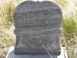David J Morgan