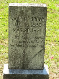 Walter W Brown