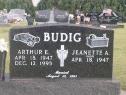 Arthur E Budig