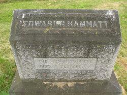 Edward Rumney Hammatt