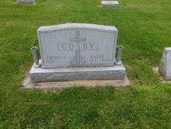 Wayne J. Cosby