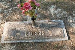 Susannah Arminda Sue <i>Petree</i> Burns