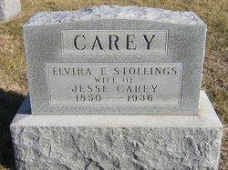 Elvira T <i>Stollings</i> Carey