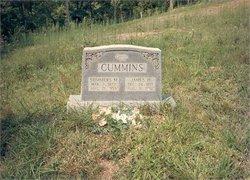 James Henry Cummins