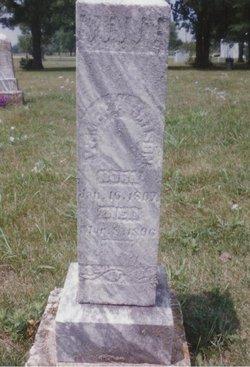 William M Harrison