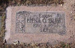 Elena <i>Garcia</i> Bravo